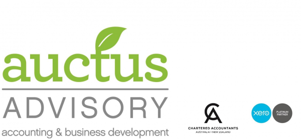 Auctus Advisory